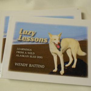 luzy lessons book